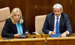 Vláda - Radičová a Dzurinda