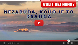 Volebný televízny spot Richarda Sulíka | Parlamentné voľby 2016