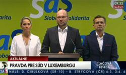 Radoslav Procházka na post sudcu - Sulík